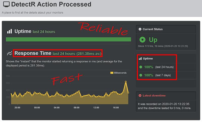 DetectR 100% Uptime